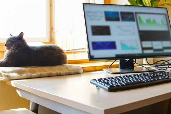 How Kyero make remote working work